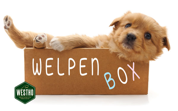 "Alles für den Welpen in der ""WESTHO Welpenbox"""